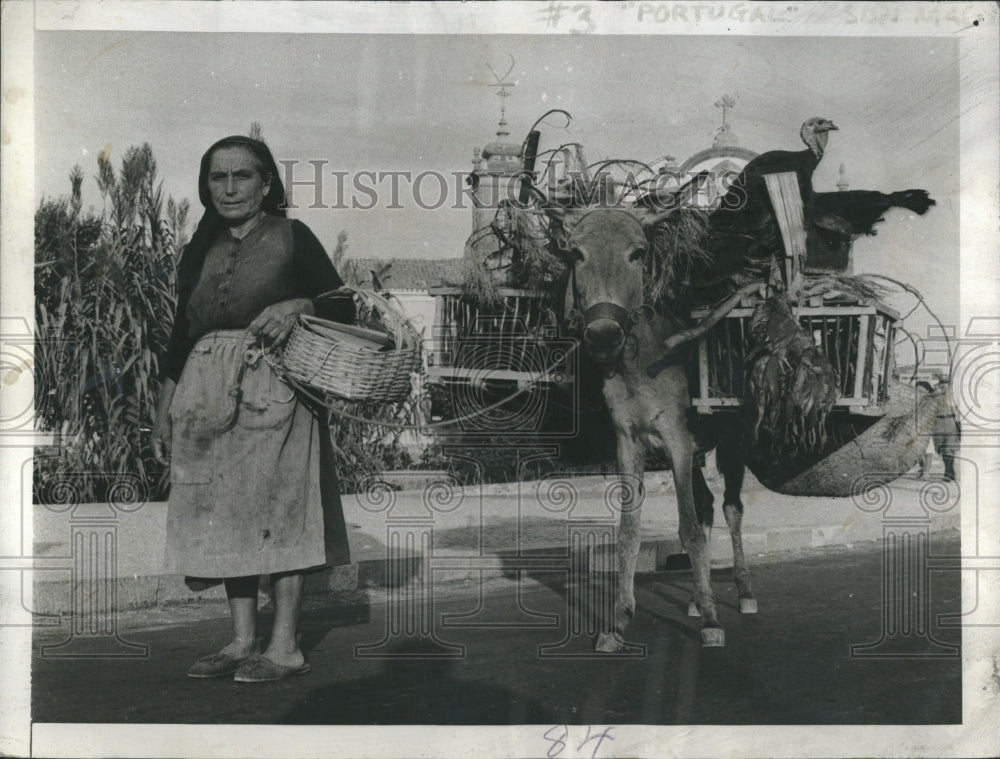 1942 Press Photo Portugese woman goes to market with donkey. - Historic Images
