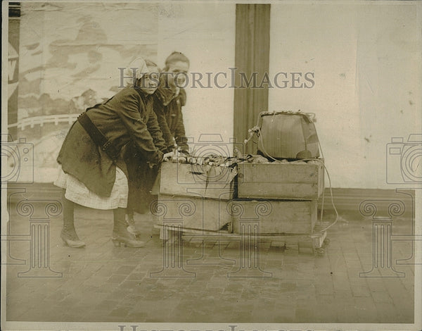 1919 Press Photo Public market in food shortages of the war effort - Historic Images