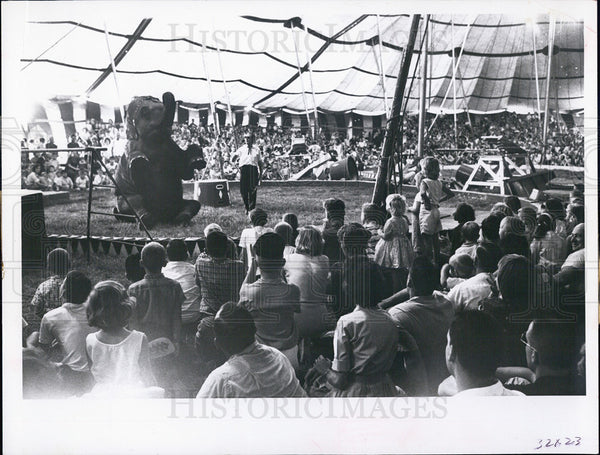 1963 Elephant performing at Cristiani-Wallace Bros. Circus - Historic Images
