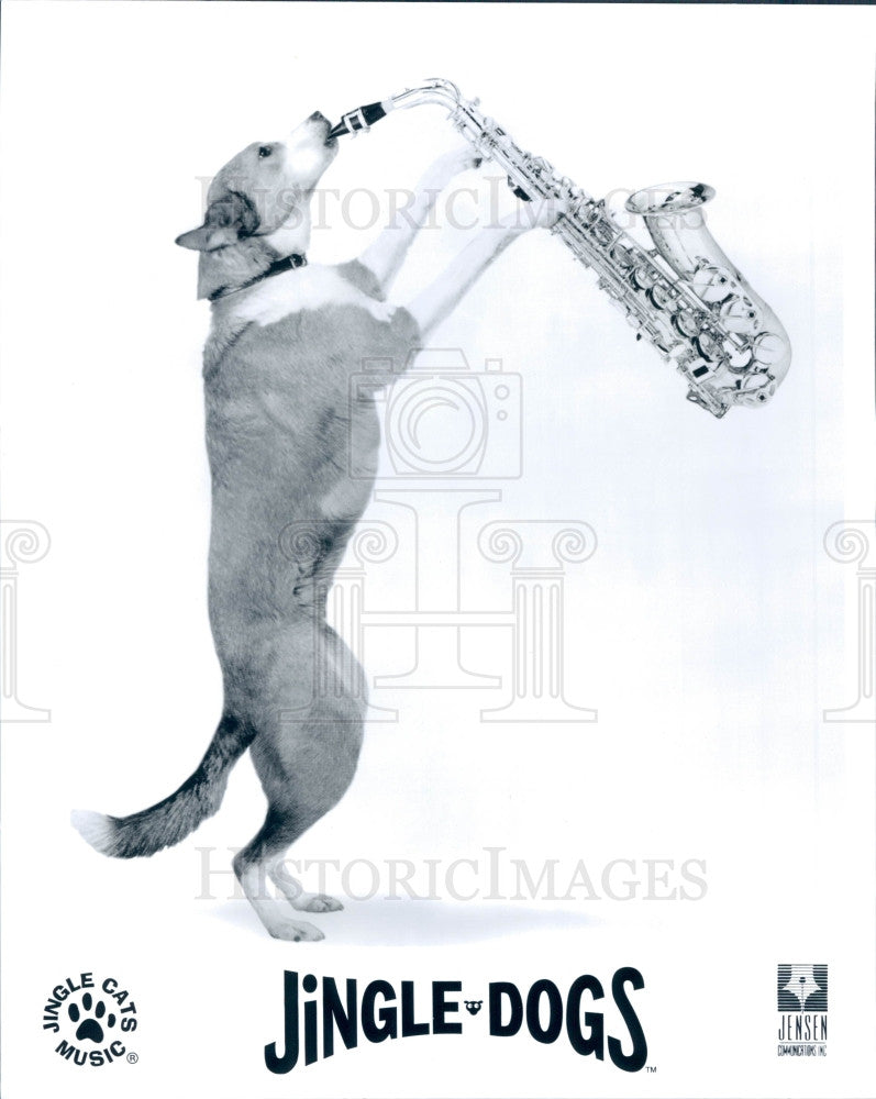 1995 Entertainers Jingle Dogs Press Photo - Historic Images