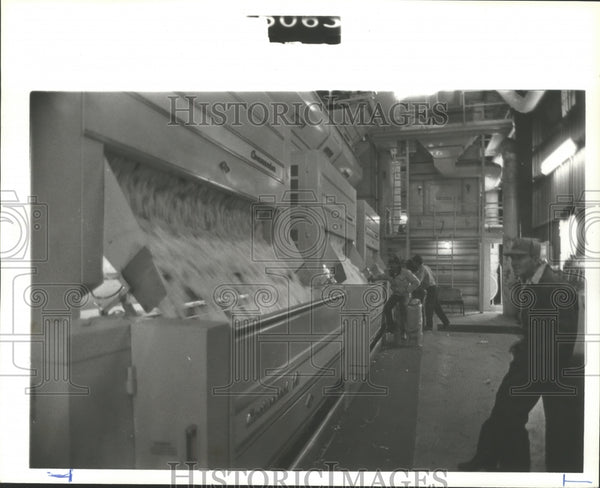 1979 Press Photo Cotton flows through ginning machine to separate debris - Historic Images