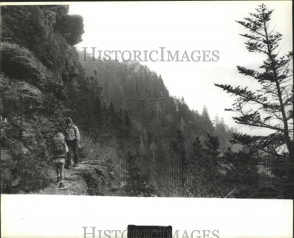 1979 Press Photo Hikers along trail in Birmingham, Alabama - abna11774 - Historic Images