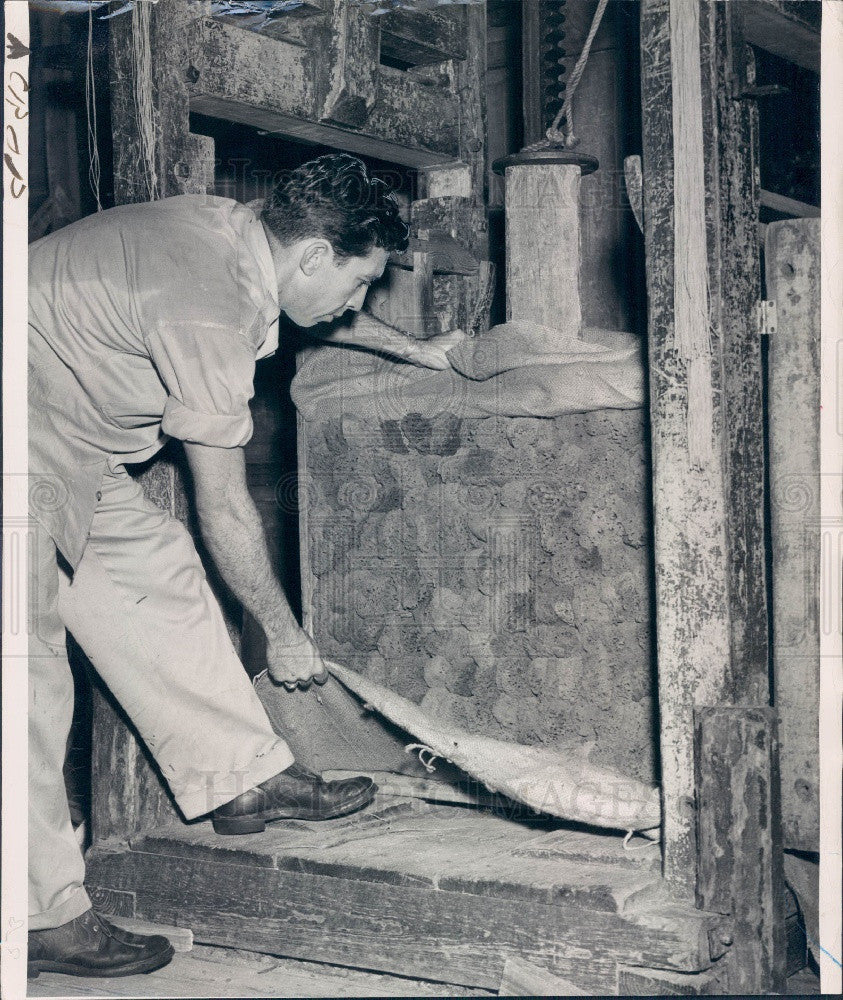 1947 Sponge Packing Press Press Photo - Historic Images