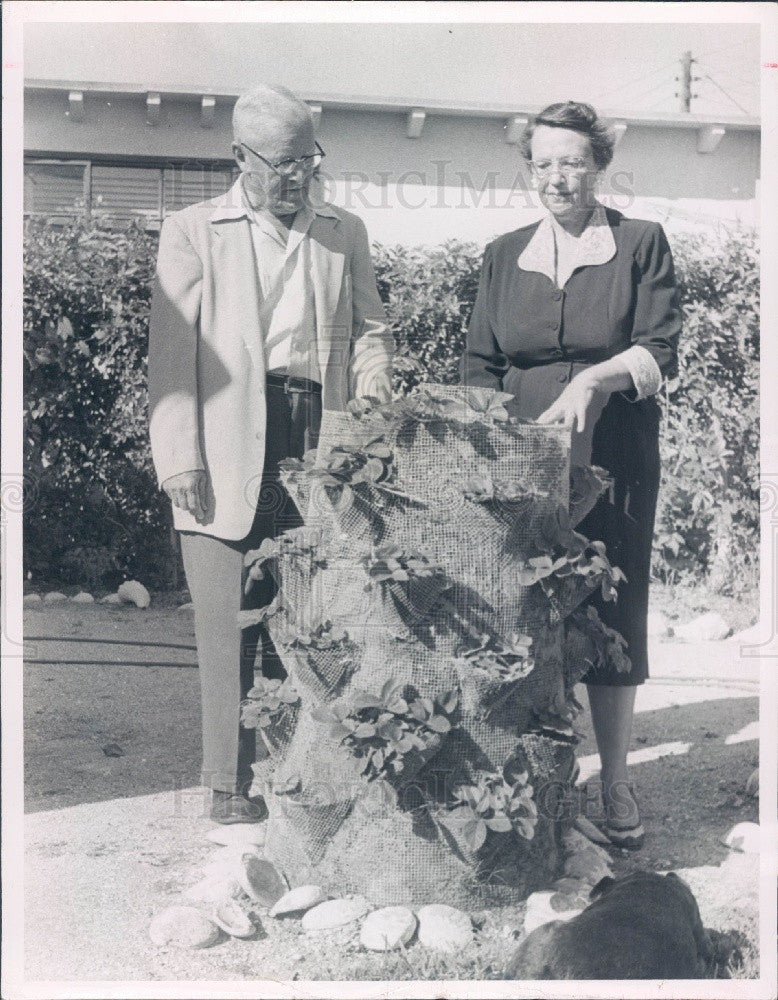 1957 Florida Unique Strawberry Planter Mr. & Mrs. Theo James Press Photo - Historic Images