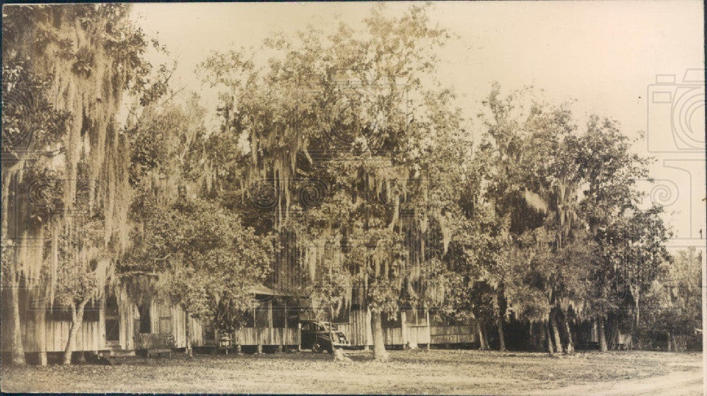 Undated Florida Tom's Camp Postcard Press Photo - Historic Images