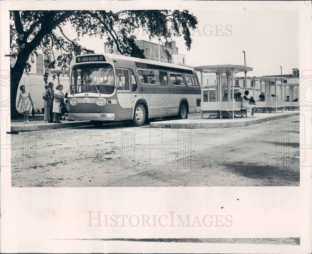 1974 Clearwater Florida Central Pinellas Transit Authority Bus Stop Press  Photo