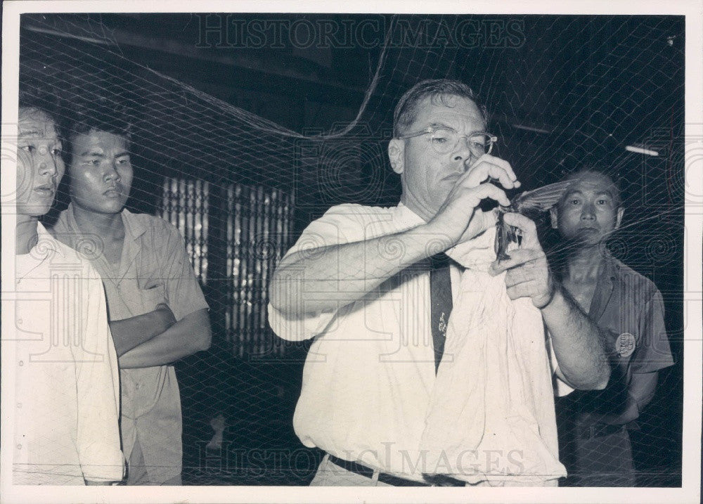 1965 Bangkok Thailand SEATO Medical Research Lab Project on Swallows Press Photo - Historic Images