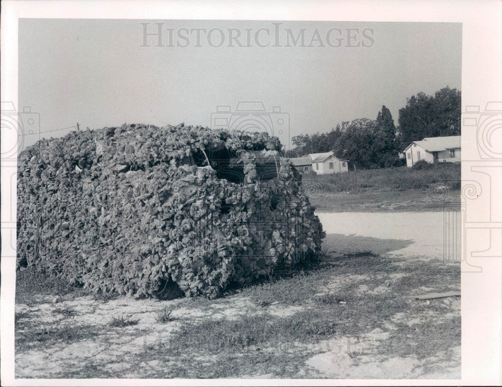 1971 Tarpon Springs, Florida Sponge-Covered Jeep Press Photo - Historic Images