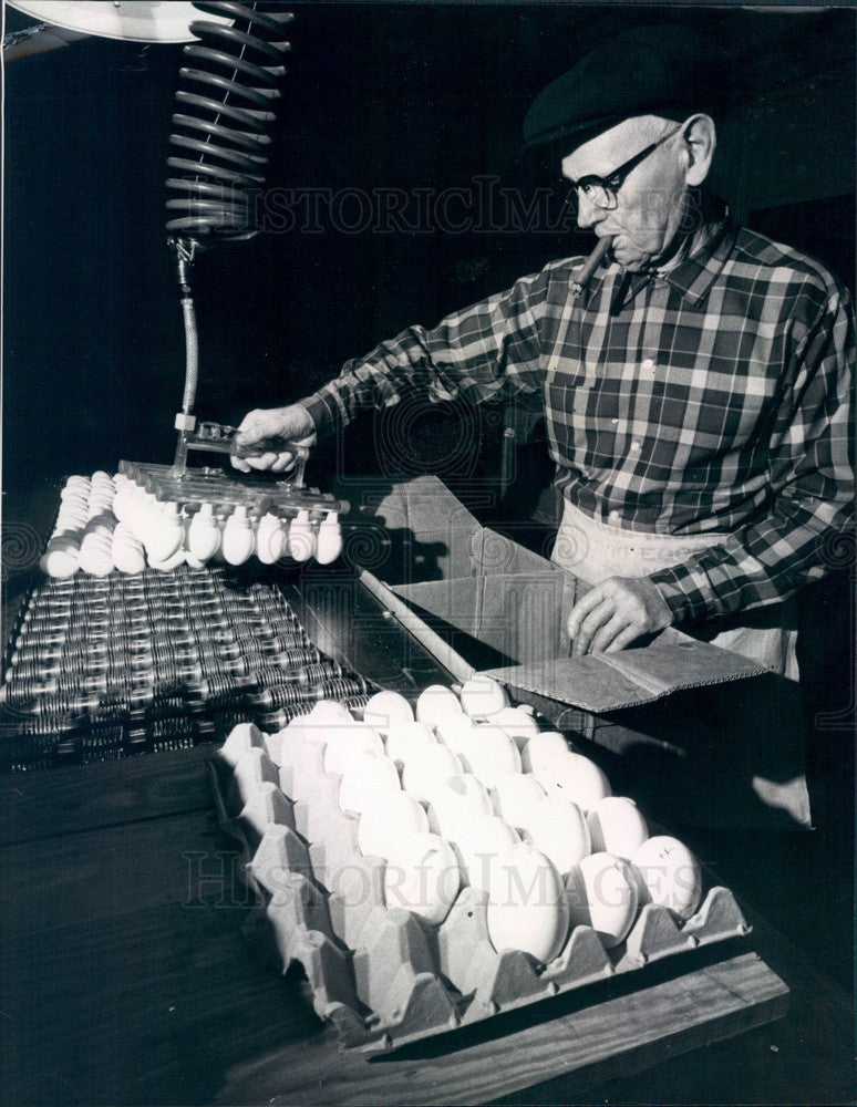 1970 New Jersey Otto Rode Egg Processing Corp, Wilbird More Press Photo - Historic Images