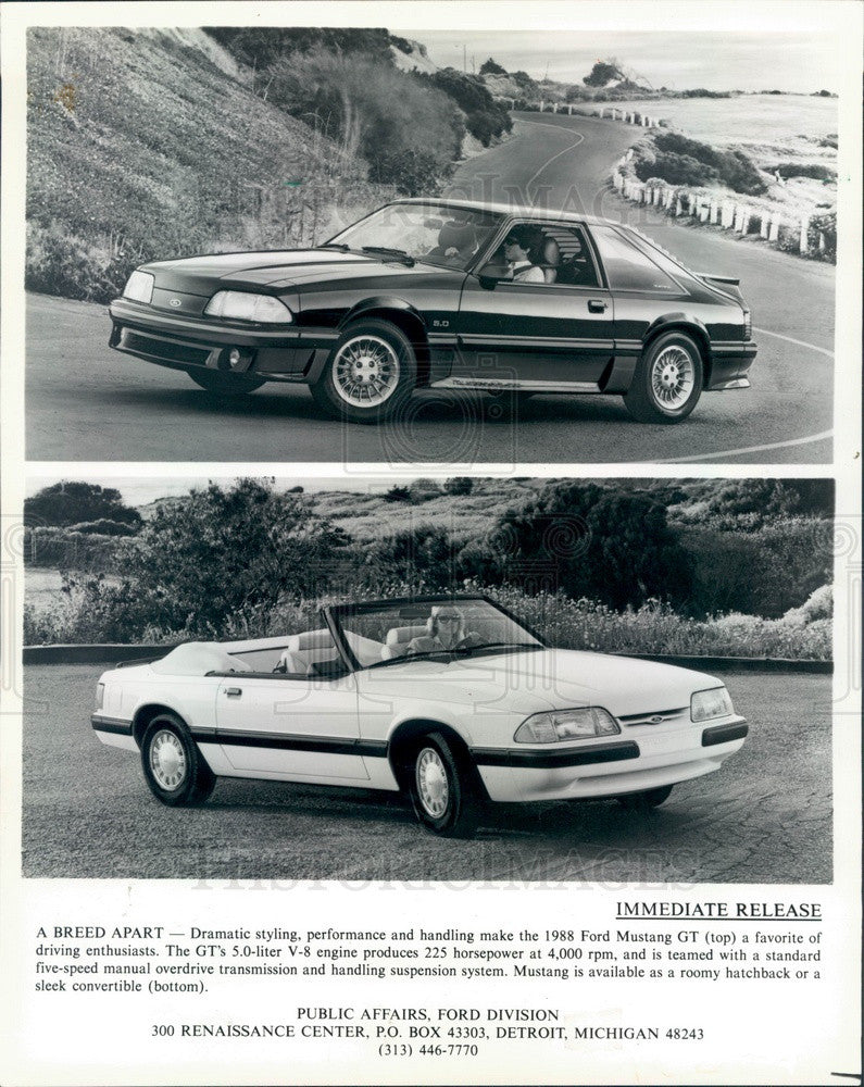 1988 Ford Mustang 1988 GT Convertible & Hatchback Press Photo - Historic Images