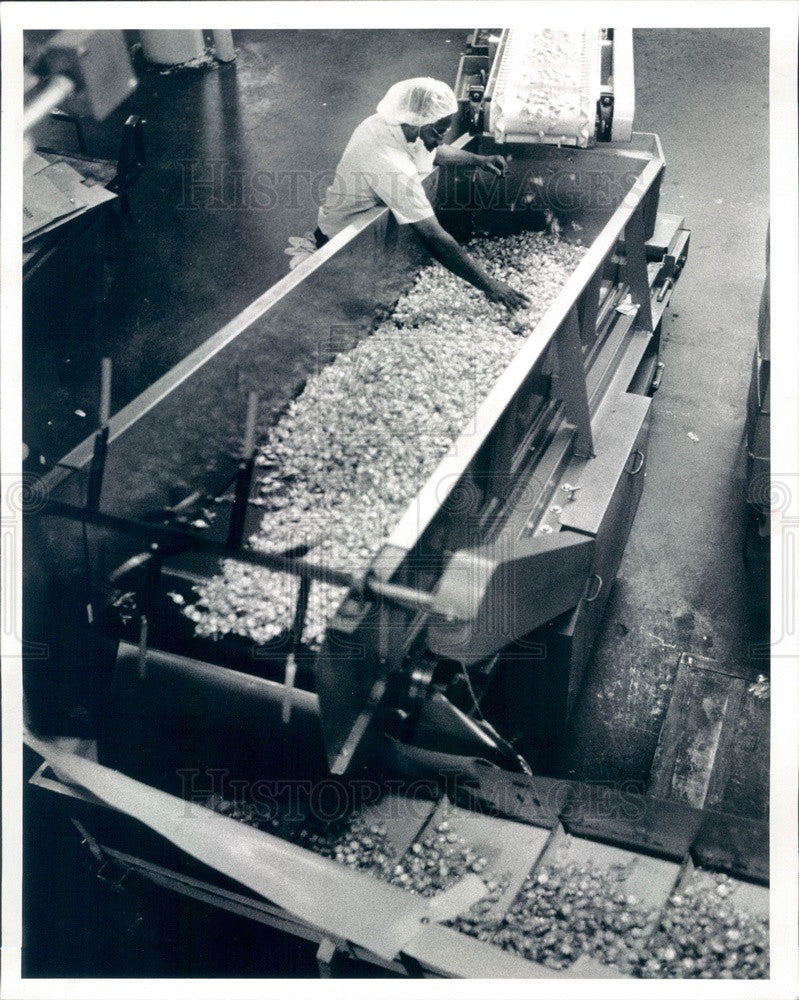 1993 Chicago, Illinois EJ Brach West Side Candy Plant Press Photo - Historic Images