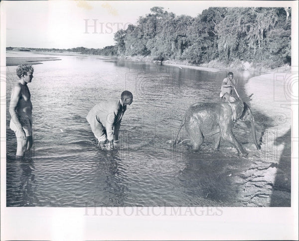 1999 Africa, Baby Elephant Press Photo - Historic Images