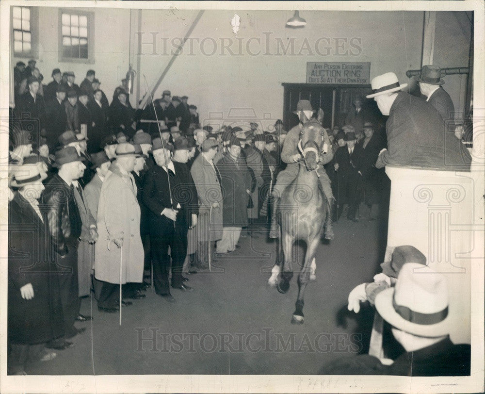 1939 Chicago, Illinois Aged Police Horse Auction Press Photo - Historic Images