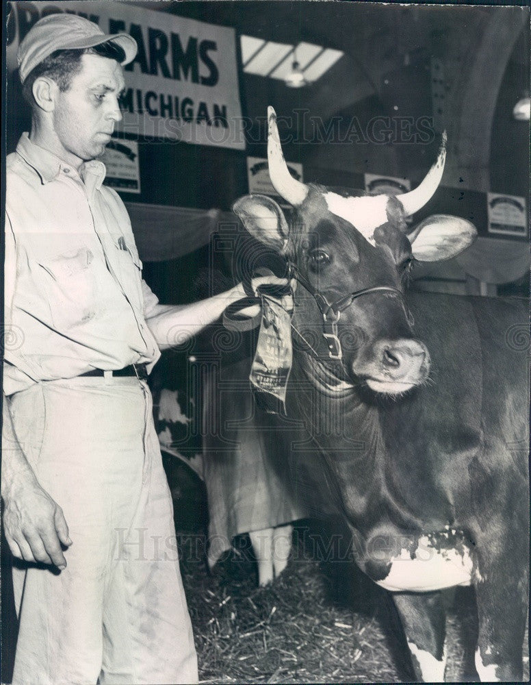 1954 Chicago, IL Intl Dairy Show Jr Champion Ayrshire Press Photo - Historic Images