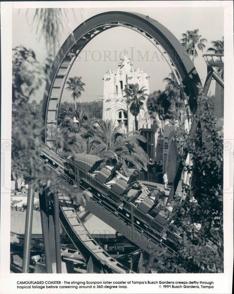 1993 Tampa, Florida Busch Gardens Stinging Scorpion Roller Coaster Press Photo - Historic Images