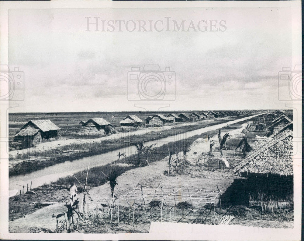 1958 South Vietnam Rice Farms Press Photo - Historic Images