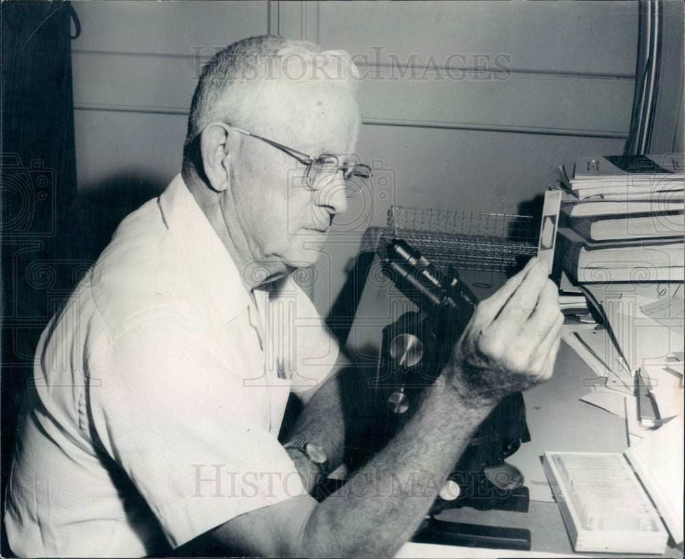 1965 Algae Fossil Expert Dr J Harlan Johnson of CO School of Mines Press Photo - Historic Images