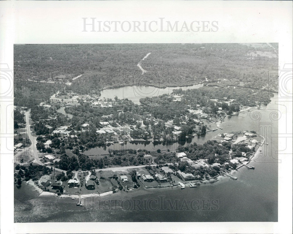 1979 Pasco County, Florida Bailey's Bluff Aerial View Press Photo - Historic Images