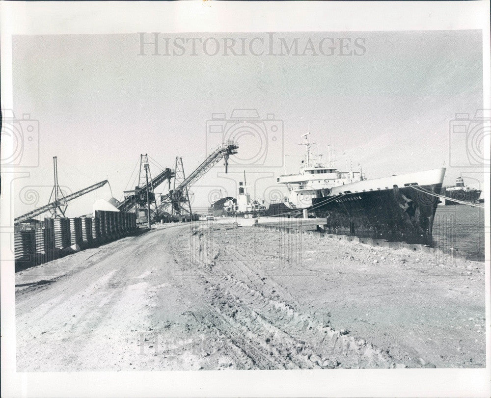 1982 Bradenton, Florida Port Manatee, Phosphate Carrier Press Photo - Historic Images