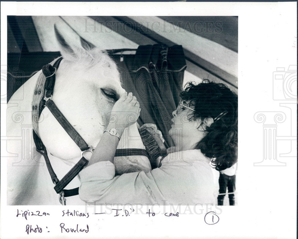 1986 Herrmann Lippizan Stallion Romeo Neapolitano & Rider Press Photo - Historic Images