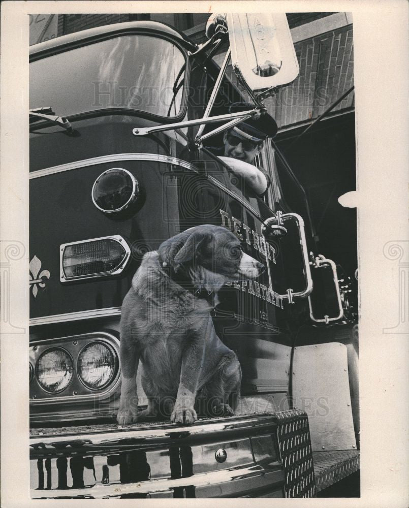 1971 Press Photo Charlie Dog - Historic Images