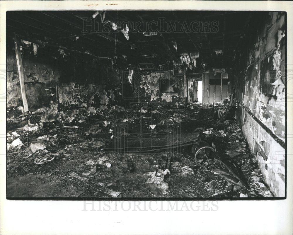 1979 Press Photo Fire Tiger Record Store Burned Blaze - Historic Images