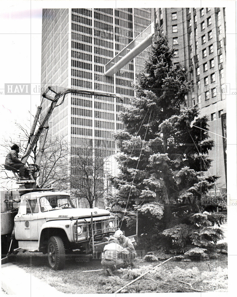 1977 Press Photo CHRISTMAS TREE - Historic Images
