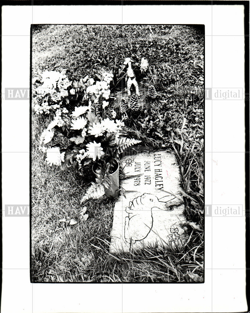 1979 Press Photo Cemetery Animal - Historic Images