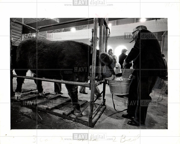 Press Photo Detroit livestock auction Fairgrounds - Historic Images