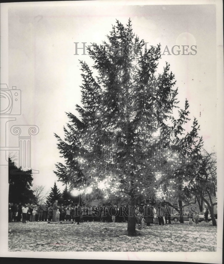 1989 Press Photo Mike Miller Lighted Love Light Tree In Oconomowoc - mjb67149 - Historic Images
