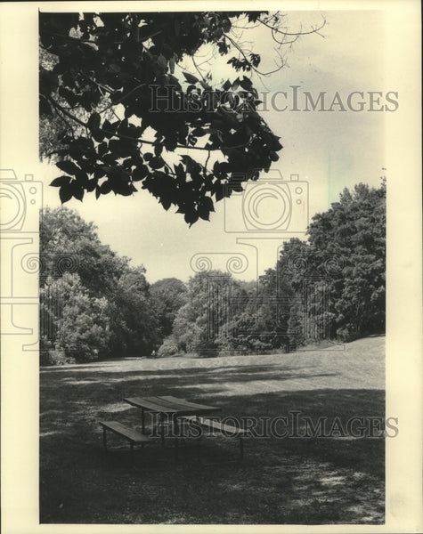 1985 Press Photo A view of Guenther's Pond in Port Washington, Wisconsin - Historic Images