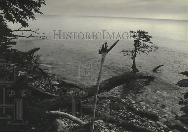 1979 Press Photo Waters from one edge of Wisconsin's Shorewood Nature Preserve - Historic Images