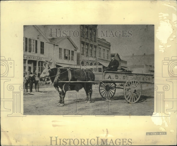 Press Photo Man Drives Wagon In Milwaukee - mjx56719 - Historic Images