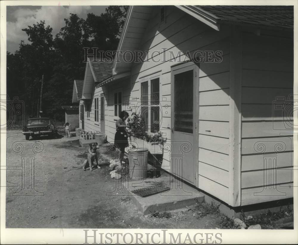 1965 Press Photo Girl Waters Zinnias At Kincaid Cabins In Jefferson, Michigan - Historic Images
