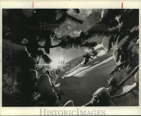 1979 Press Photo An alpine skier tracks through fresh powder snow - sas15930 - Historic Images