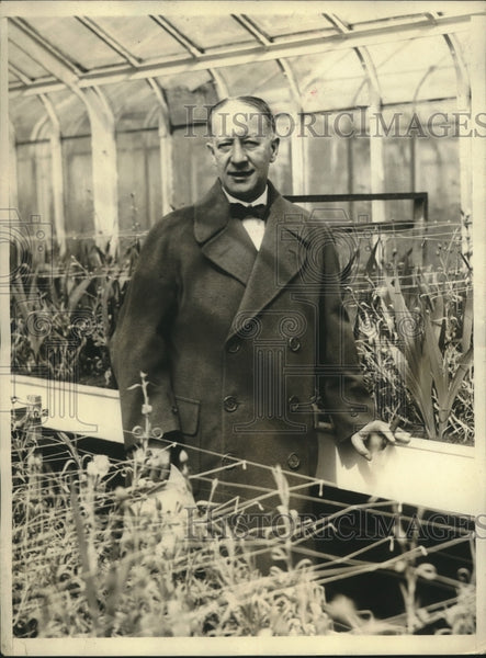 Press Photo Shows Governor Alfred E. Smith in Hothouse at Executive Mansion - Historic Images