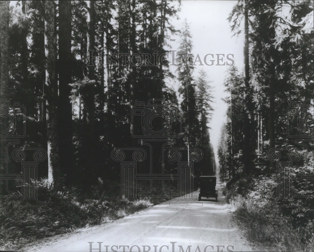 1903 Automobile travels down a dirt road on the Olympic Peninsula - Historic Images