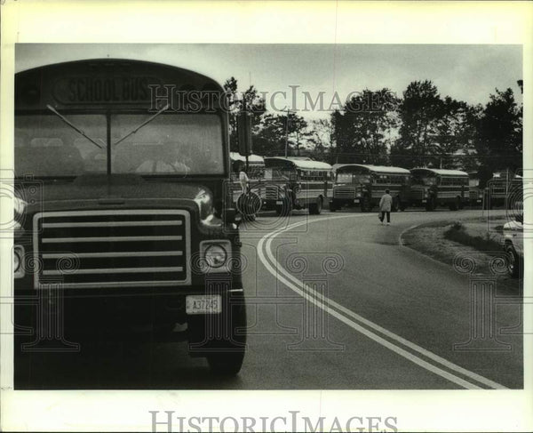 1988 Press Photo School busses lined up at Colonie Central High School, New York - Historic Images