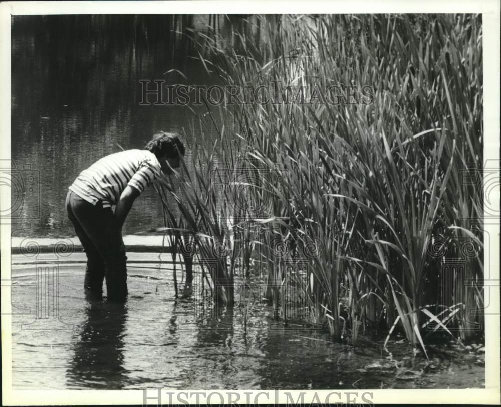1990 Press Photo Dominic Civitillo wades in Steinmetz Park Pond, Schenectady, NY - Historic Images