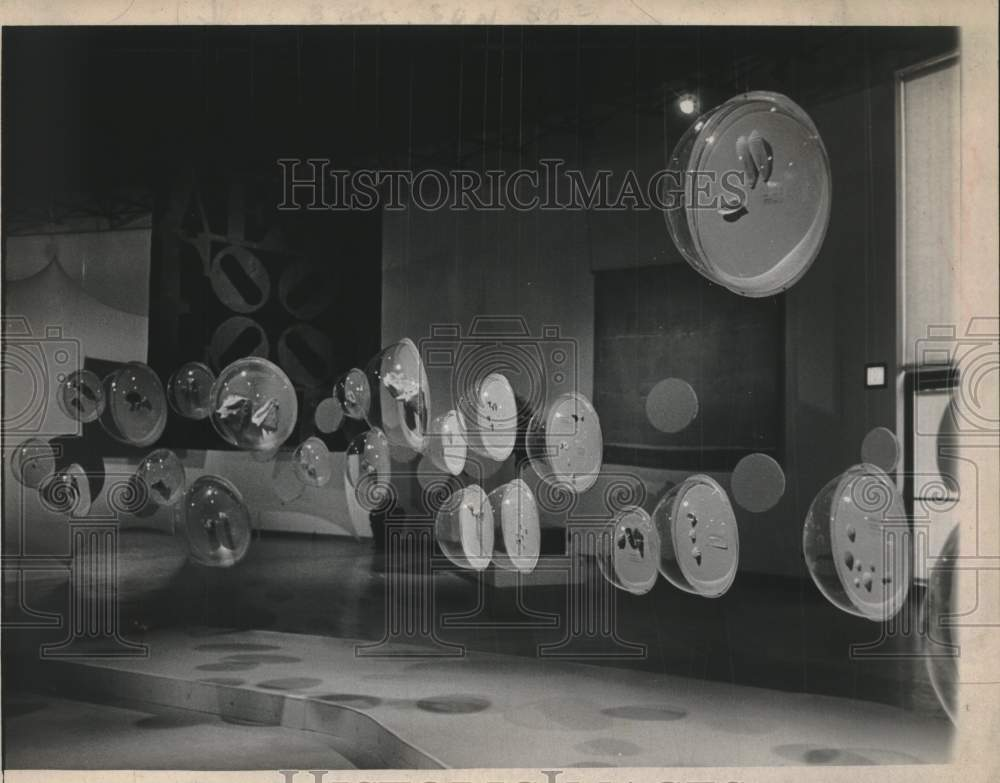 Press Photo Shell exhibit at Schenectady Museum New York - tua16933 - Historic Images