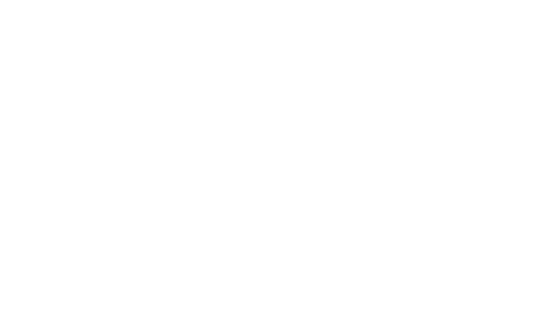 Robert Young Antiques