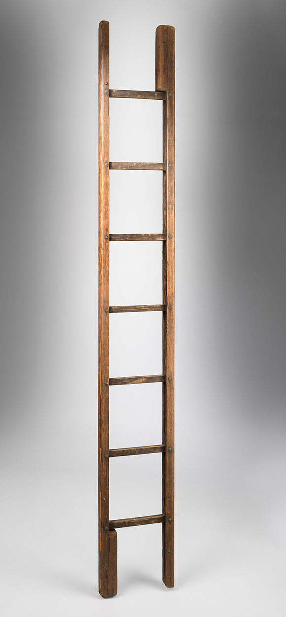 Unusual Vernacular Metamorphic Library Ladder
