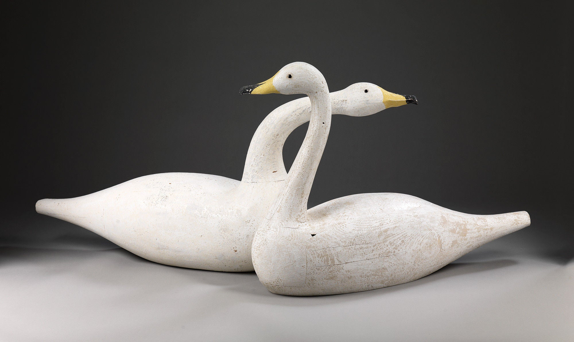 Magnificent Pair of Full Bodied Life-Size Swans