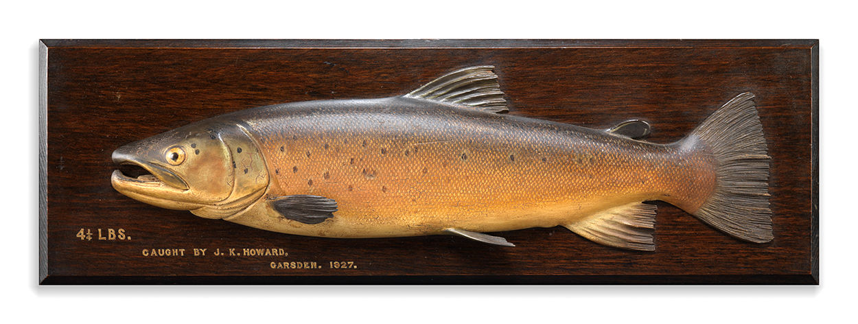 A Fine Brown Trout Fishing Trophy