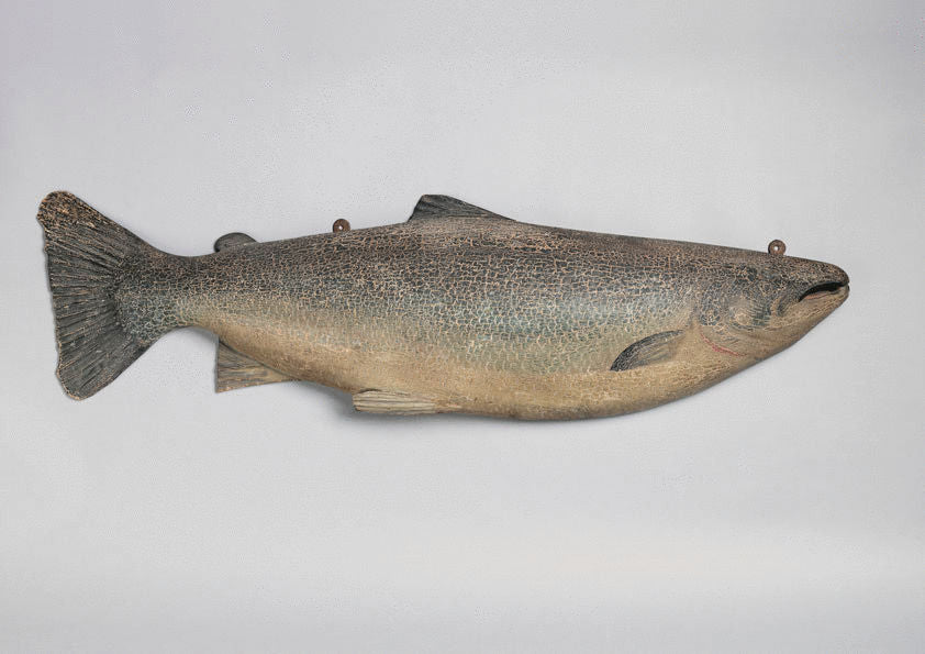 Magnificent Salmon Form Fishing Trophy
