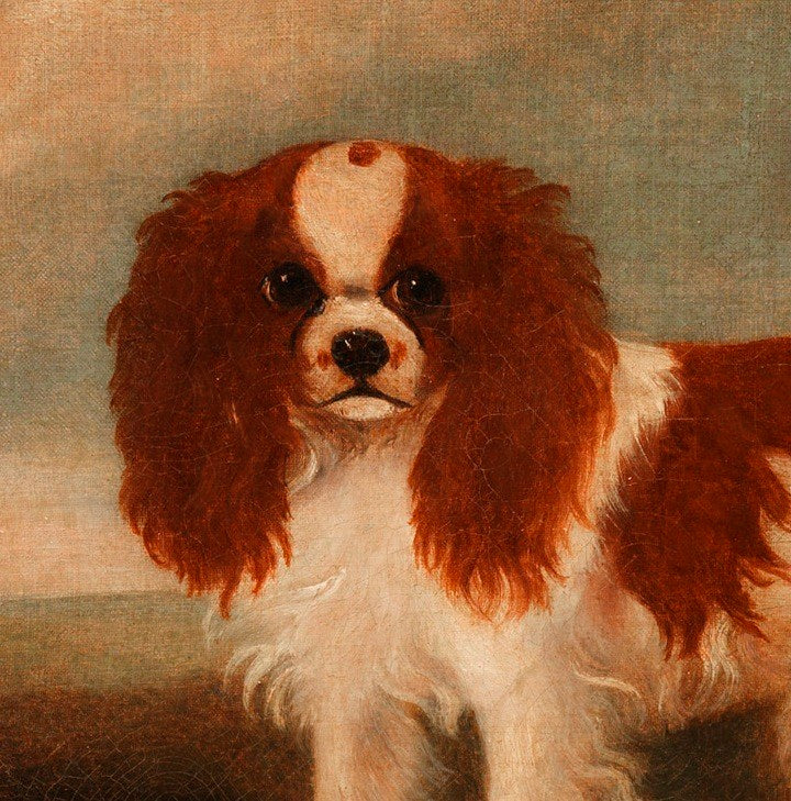 Twin Portraits of King Charles Spaniels