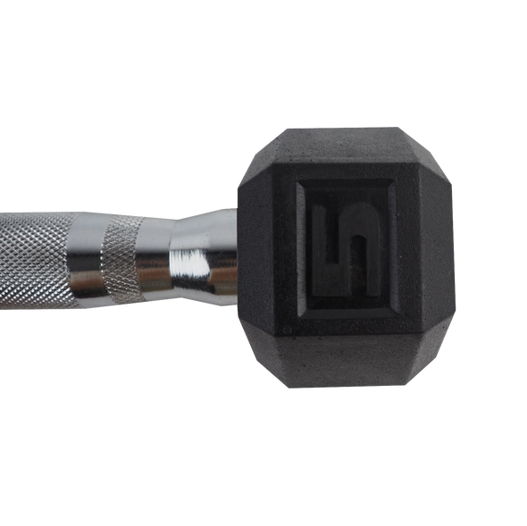 5lb Coated Hex Dumbbell