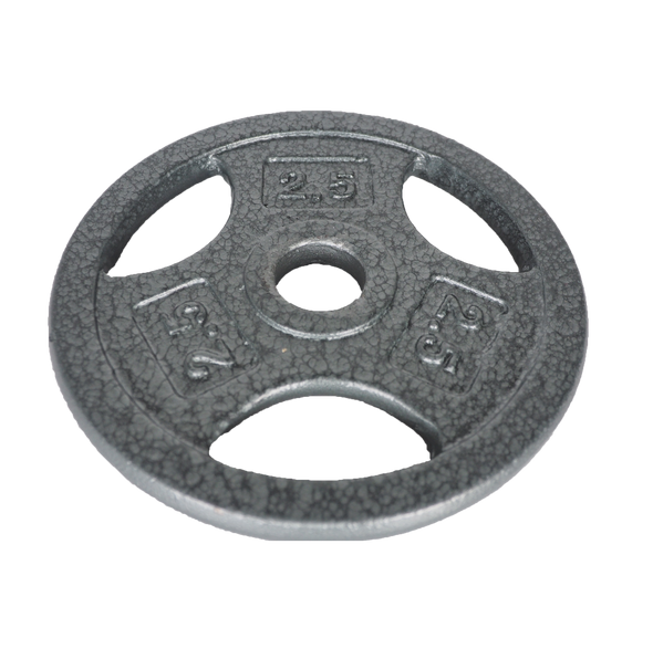 2 1/2LB Grip Weight Plate