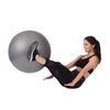 65cm Stability Ball - With Handpump