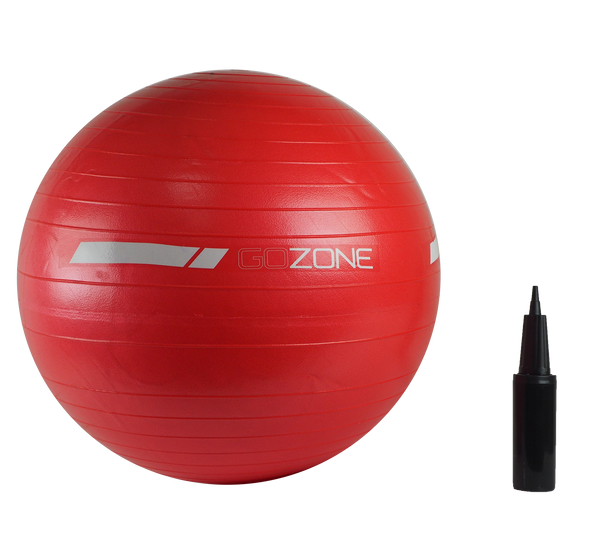 55cm Exercise Ball - With Handpump